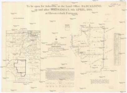 Plan of portions 8 to 11 parish of Avington, Avington resumption, county of Youranigh
