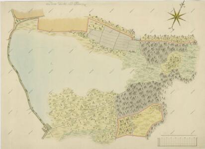Geometrický plán rybníka Starý Vdovec a jeho okolí 1