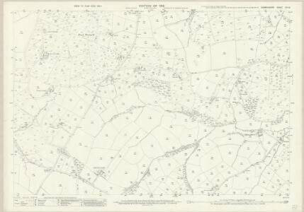 Denbighshire XIII.15 (includes: Llanrhaiadr Yn Cinmerch) - 25 Inch Map