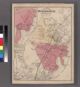 Plate 59: Town of Mamaroneck, Westchester Co. N.Y.