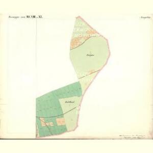 Passeken - c5642-1-011 - Kaiserpflichtexemplar der Landkarten des stabilen Katasters
