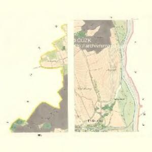 Policzna - m2353-1-004 - Kaiserpflichtexemplar der Landkarten des stabilen Katasters