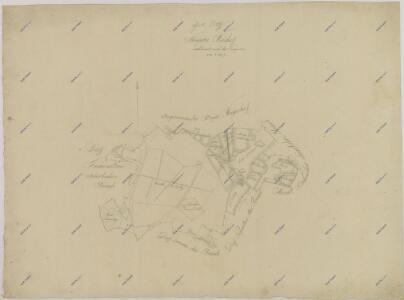 Záměrná mapa Nového dvora na statku Bzí 1
