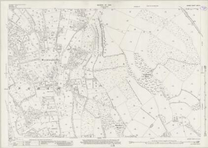 Surrey XXVII.4 (includes: Chelsham; Limpsfield; Oxted; Titsey; Woldingham) - 25 Inch Map