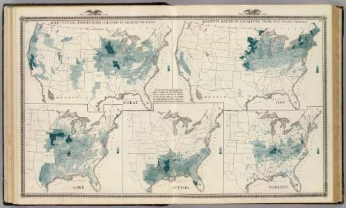 Agricultural productions colored by grades to show quantity raised in localities. Wheat, hay, corn, cotton, tobacco.