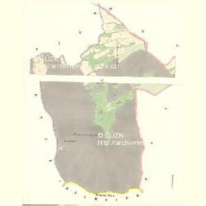 Wildschitz (Wltssic) - c8668-1-002 - Kaiserpflichtexemplar der Landkarten des stabilen Katasters