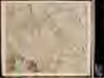 Electoratus et palatinatus ad Rhenum, episcopatuum Vormaciensis et Spirensis ducatuum Bipontini et Simmerae comitatuum Veldensis Sponheimensis, etc novissima tabula