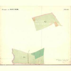 Passeken - c5642-1-005 - Kaiserpflichtexemplar der Landkarten des stabilen Katasters
