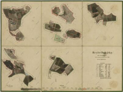 Porostní mapa polesí Dolejška 1