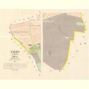 Zales (Zalesy) - c9104-1-001 - Kaiserpflichtexemplar der Landkarten des stabilen Katasters