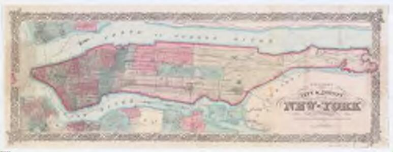 Colton's city & county map of New-York