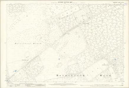 Hampshire and Isle of Wight LXX.14 (includes: St Leonards and St Ives) - 25 Inch Map